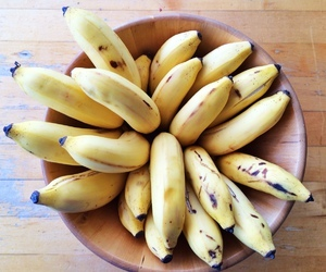 Images and videos of banana (13483)